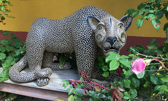 jaguar at casa na bolom